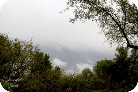 Magic rain 20