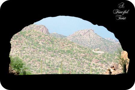 Desert wonderland 3