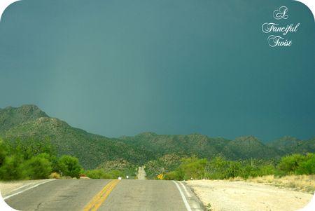 Desert wonderland 6