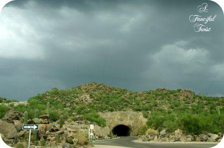 Desert wonderland 8