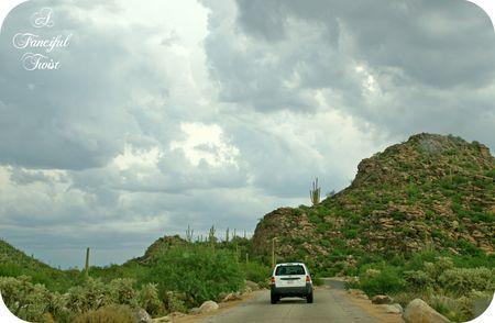 Desert wonderland 4