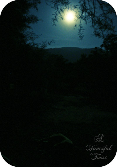 Moon 11