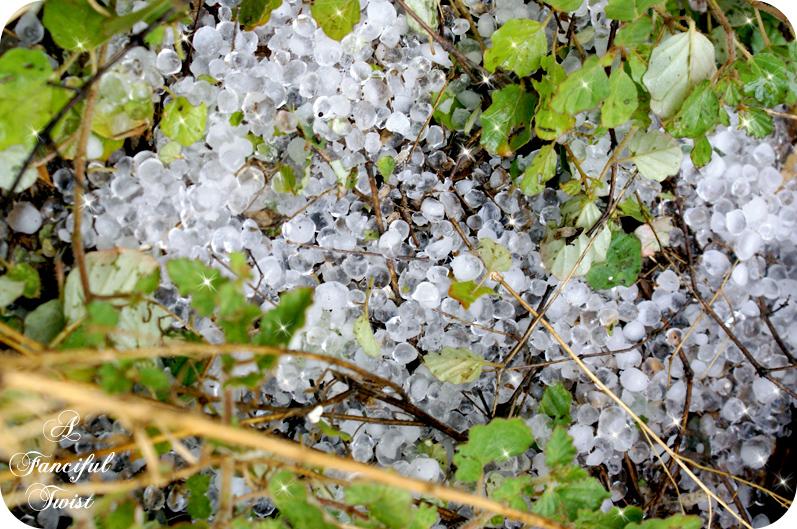 Hail August 24th