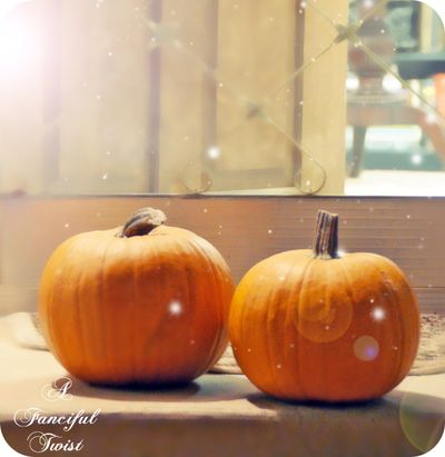 Pumpkin love 1
