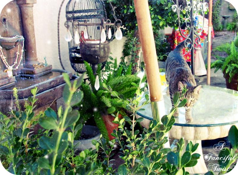 City House Garden 2