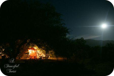 Gypsy nights 11