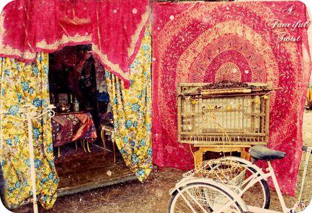 Gypsy Land 12a