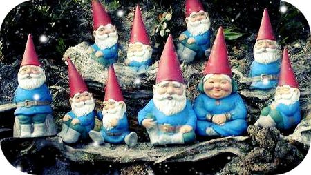 Gnomes from environmentalgeography dot com
