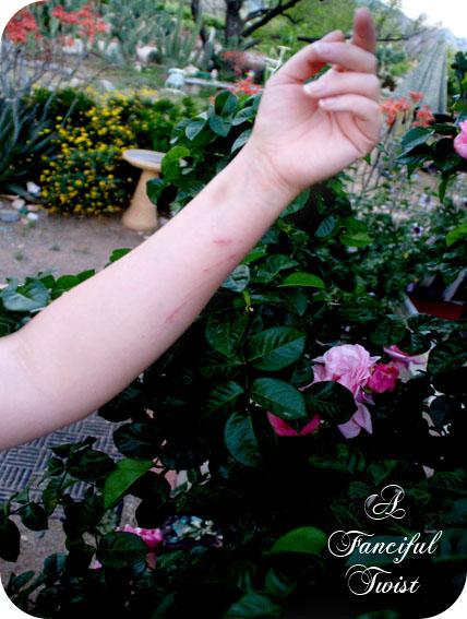 In my garden 28