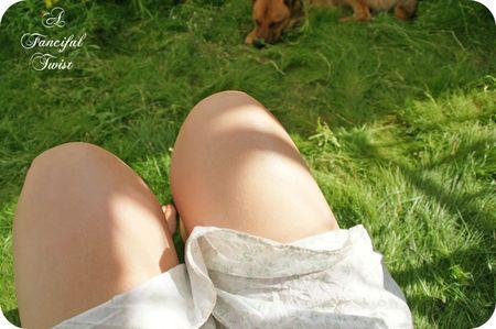 Summer morning 13