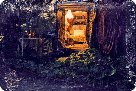 Gypsy firelight 1a