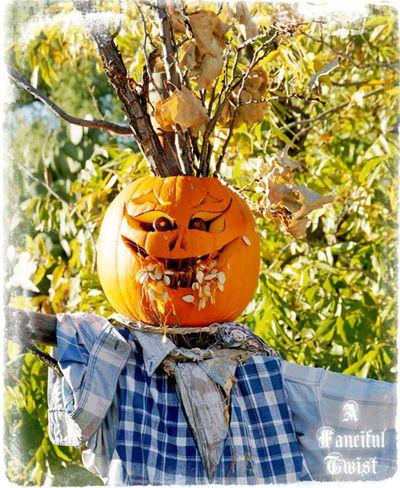 Halloween 24