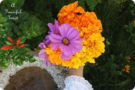 November Flowers 4
