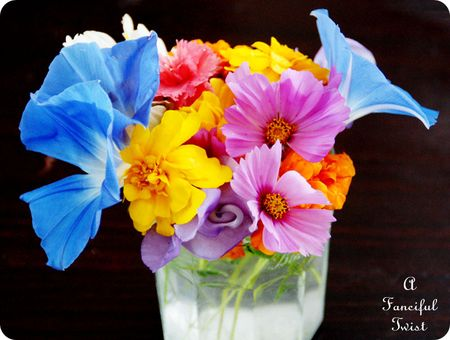 November Flowers 7