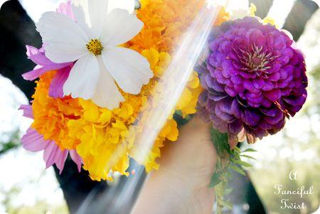 November Flowers 8