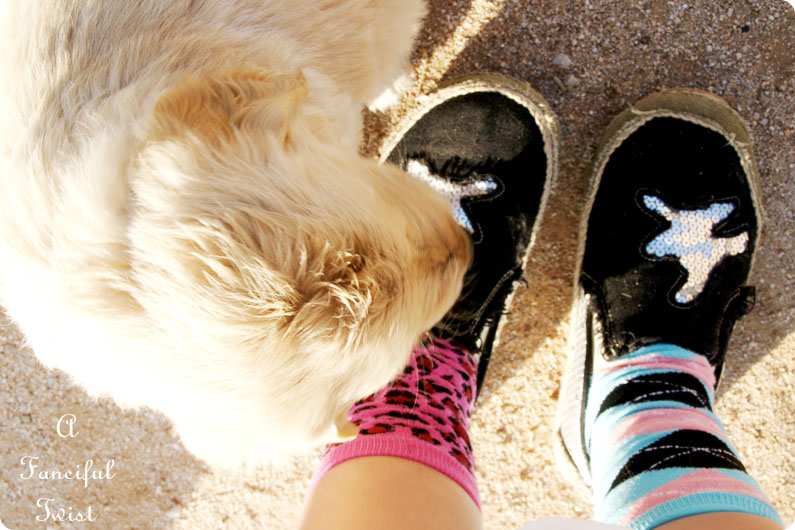 Puppy love 13