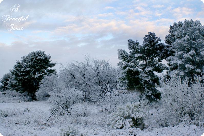 Desert southwest snow 2011 16