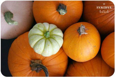 Pumpkin 2a