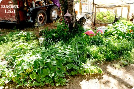 Grow green 13