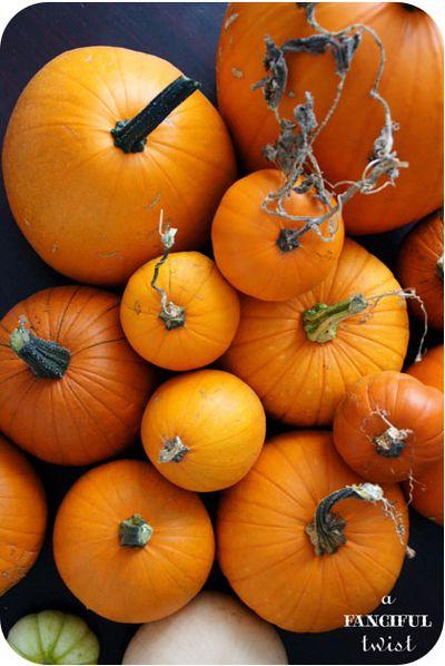 Pumpkin 4a