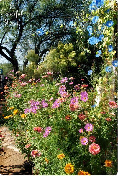 In the garden 32