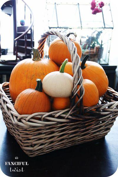 Pumpkin 11a