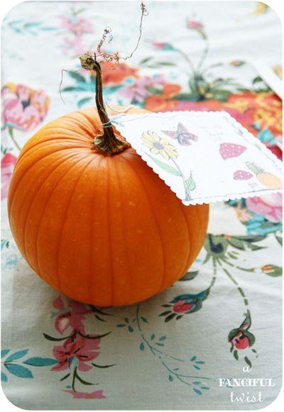 Pumpkin 16a