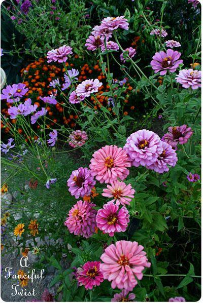 In the garden 48