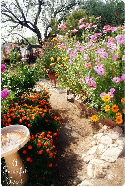 In the garden 49