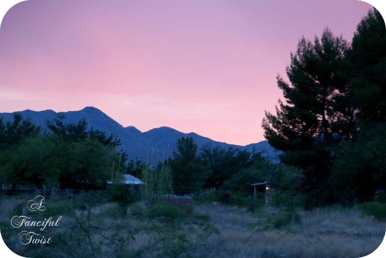 Pink sky 1