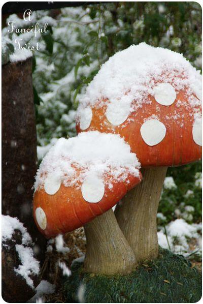 Snow garden 6