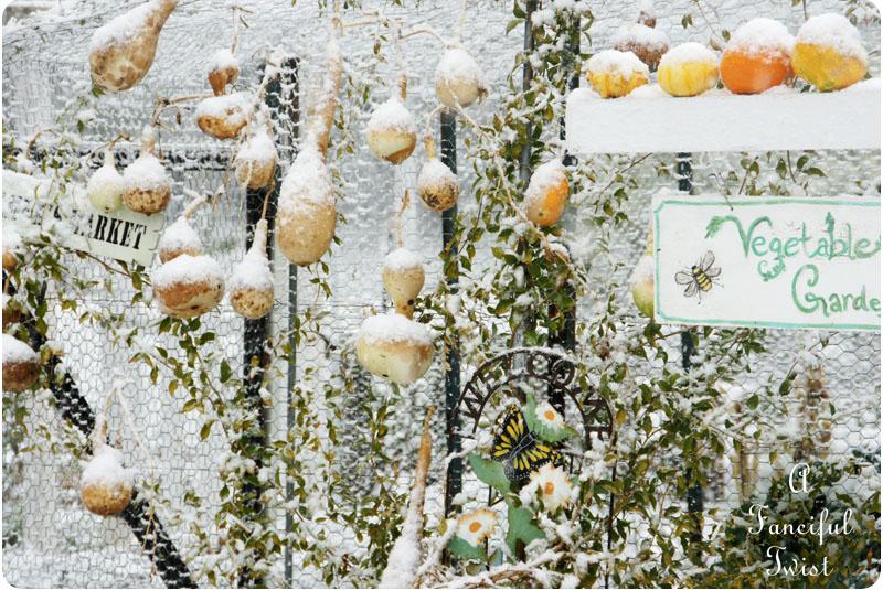 Snow garden 10