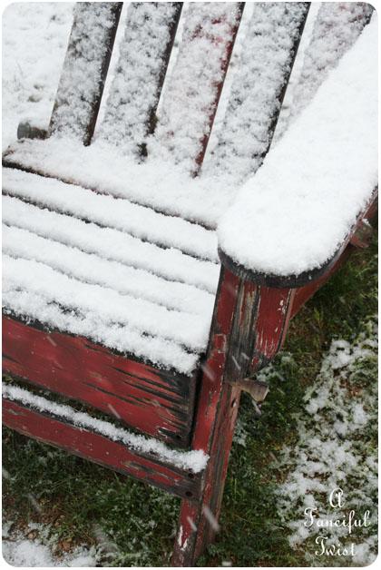 Snow garden 15
