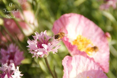 Spring garden 30a