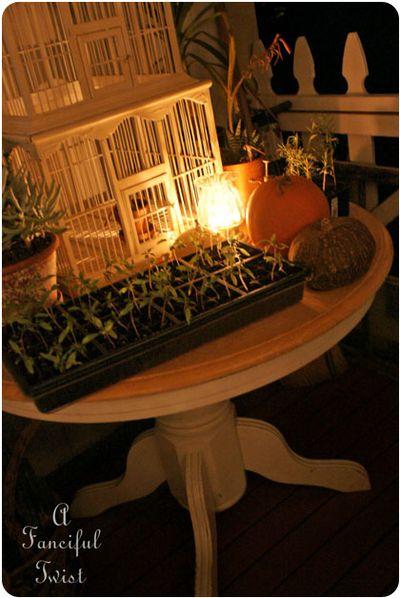 Garden night 2