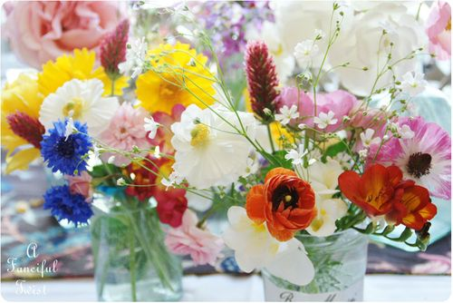 Blooms from the garden 1