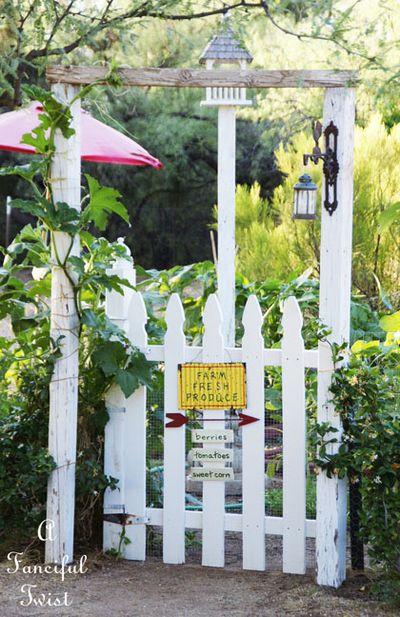 Vegetable garden 14