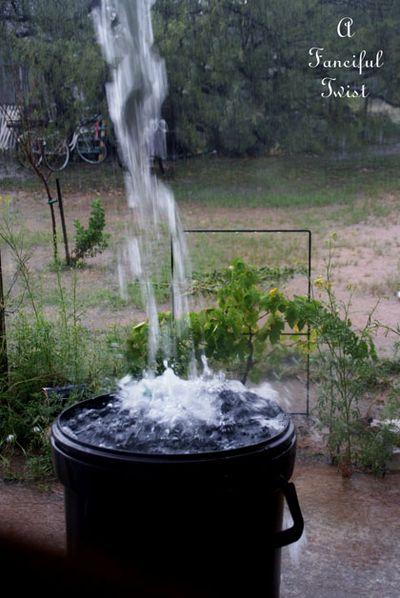 Rain in the desert 6