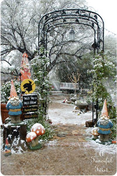 Snow garden 22