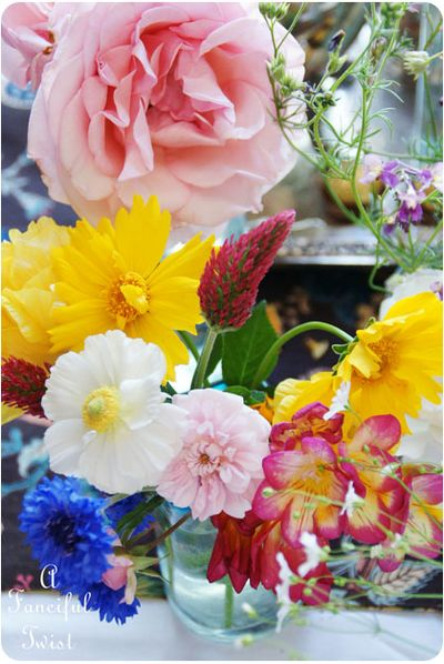 Blooms from the garden 6
