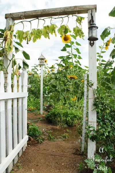 Curious garden bits 2