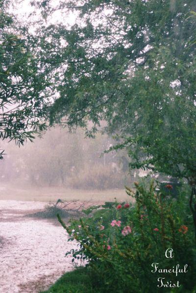 Rain in the desert 12
