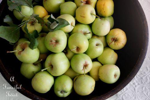 Appley 1