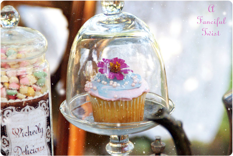 Mad tea party 25a