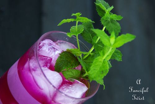 Prickly Pear Lemonade 10