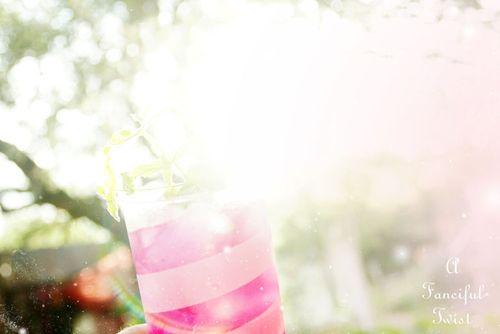 Prickly Pear Lemonade 8