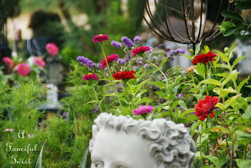 Garden collecting 12