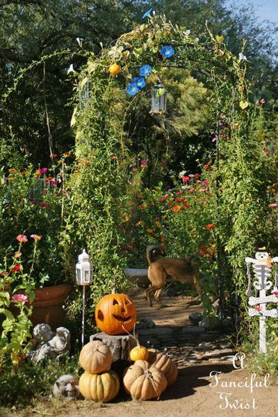 Halloween Garden 9