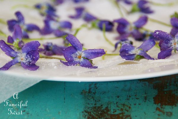 Candied violets 2