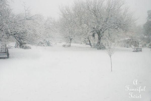Snow fall 5
